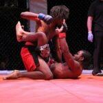 chicago mixed martial arts classes