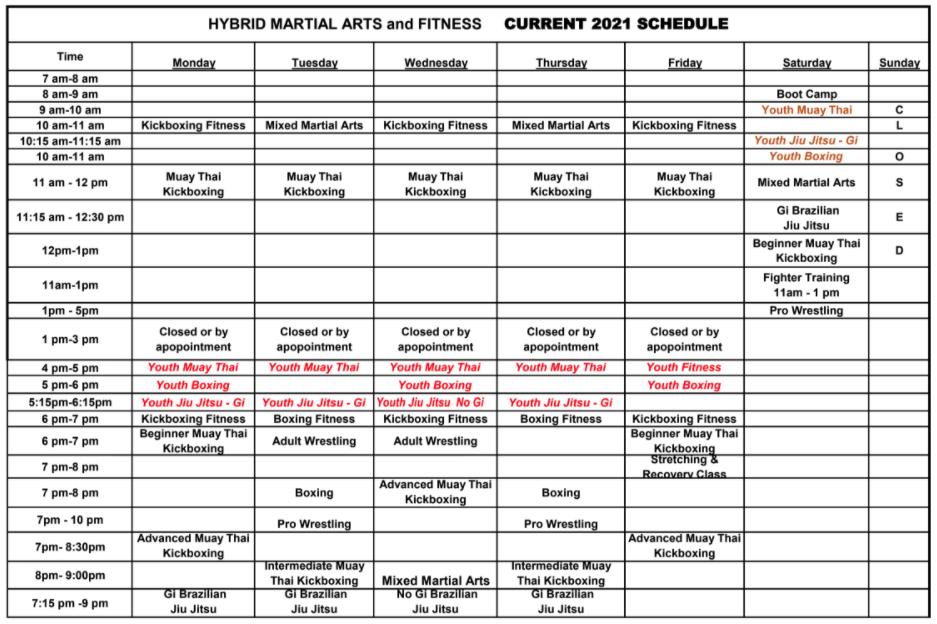 2021 MMA schedule